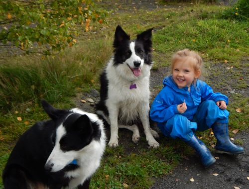 Kids and Canines